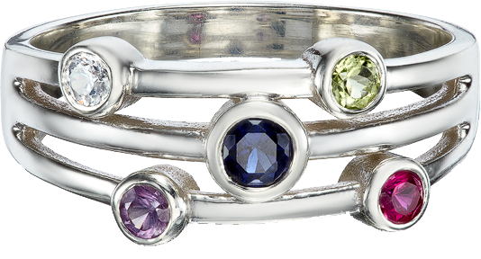 Silver Family Cosmic Ring